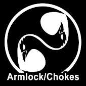 Ninjutsu Armlocks and Chokes