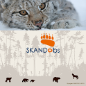 Skandobs Touch icon