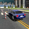Dynamic Driving Test 3D icon