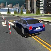 Dynamic Driving Test 3D