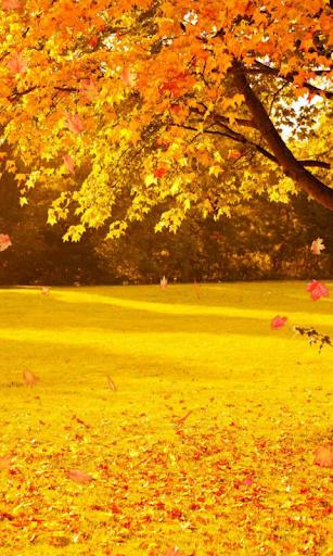 Autumn Wallpaper screenshots 1