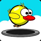 Birdie Bounce