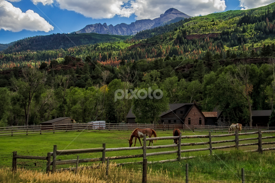 Evening in the Valley by Michael Buffington - Landscapes Mountains & Hills ( farm, mountain, horse,  )