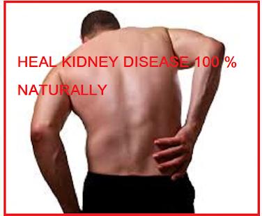 Kidney Disease Treatment