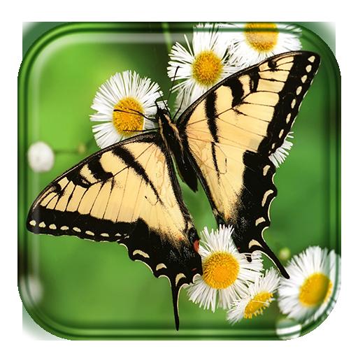 个人化の蝶の壁紙 LOGO-記事Game