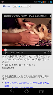 Today Dog Video- screenshot thumbnail