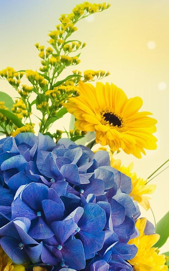 Spring Flowers Live Wallpaper Screenshot
