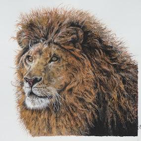 LEON by Kile Zabala - Painting All Painting ( draw, acuarela, leon, animales, dibujos, naturaleza )