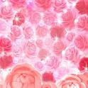 Kira Kira☆Jewel(No.93)Free icon