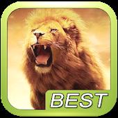 Lion Roar Animals Sound