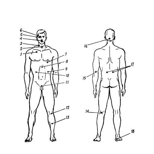 Уязвимые места тела человека. 書籍 App LOGO-APP開箱王