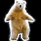 Polar Bear does icon