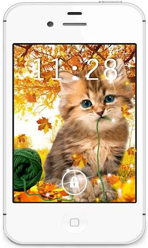 Autumn Kitty HD live wallpaper