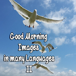 Good Morning Images M. Lang. 2
