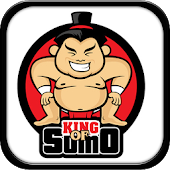 King Of Sumo Wrestler Fighter