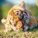 赤ちゃん動物図鑑100 icon