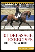 Screenshot of 101 Dressage