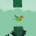 Tappy Bird icon