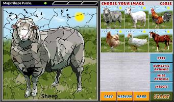 Screenshot of Magic Shape Puzzle 1