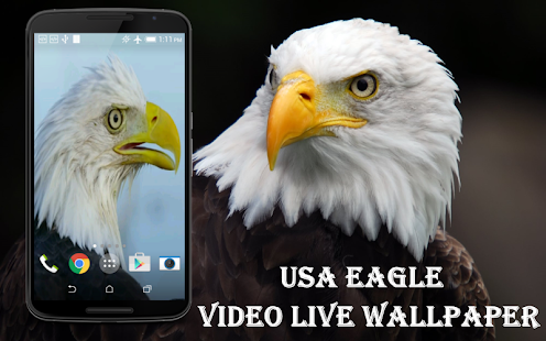 USA Eagle Live Wallpaper