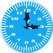 Killer Whale 3 Analog Clock