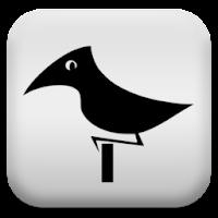 Bird Songs 24