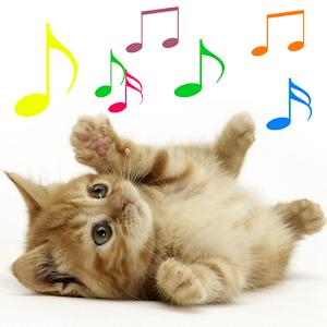 Miaulement - Sonneries de Chat