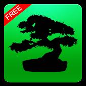 Bonsai Collection Free