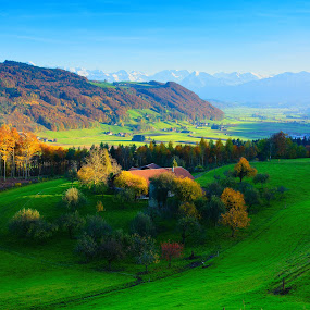 colors of November by Kitty Bern - Landscapes Mountains & Hills ( hill, mountain, autumn, bern, switzerland, colors of november,  )