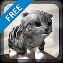 Cat-Simulator APK