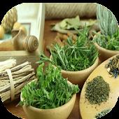 Plantas Medicinales Menopausia