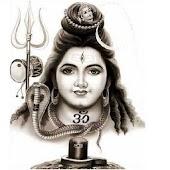 Lord Shiva, UFC group