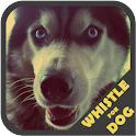 Dog Whistle Trainer icon
