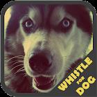犬笛のトレーナー icon