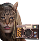 Cat Booth (cat face Camera) icon