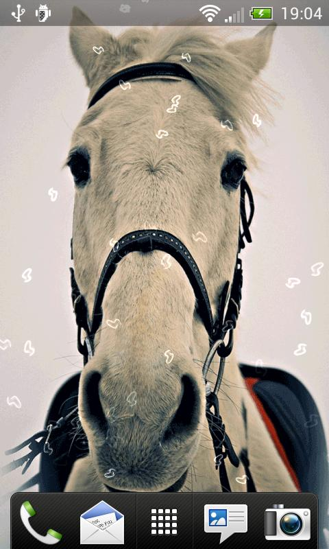 Horses Live Wallpaper - screenshot