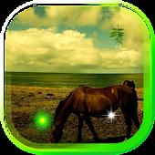 Horses  Spring LWP