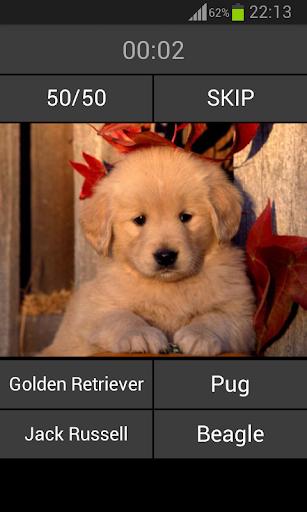 玩免費益智APP|下載Guess the puppy app不用錢|硬是要APP