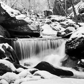by Sandra Clukey - Black & White Landscapes ( nature, cleveland tn, photographer, sandra clukey, photography )