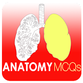 Anatomy MCQs Quiz
