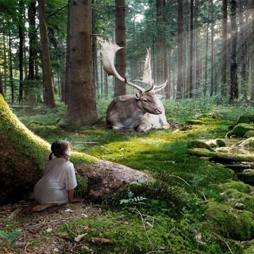 森林背景 LOGO-APP點子