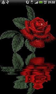 Reflective Red Rose Live Wallpaper   Izinhlelo zokusebenza ku