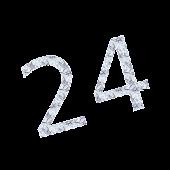 Point 24