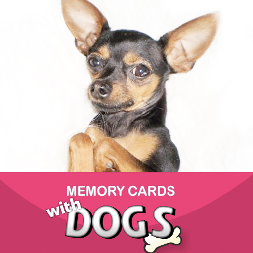 Memory Cards Game With Dogs