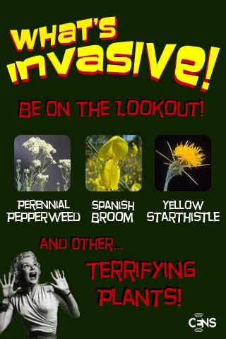 What's Invasive!- screenshot