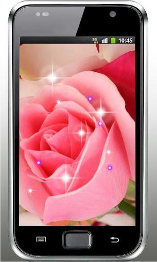 Pink Rose HD live wallpaper