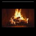 Yule Log Fire Live Wallpaper icon