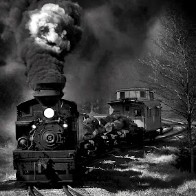 Faces in BW by Chuck  Gordon  - Black & White Objects & Still Life ( cass, shay, train, smoke, steam )