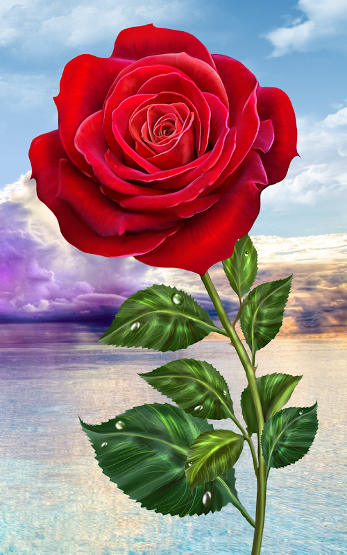 Colour By Number Monkey Majik Download : Download rose. magic touch flowers apk 1.9.3 by iim mobile free