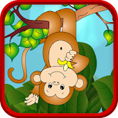 Jungle Monkey Ventura